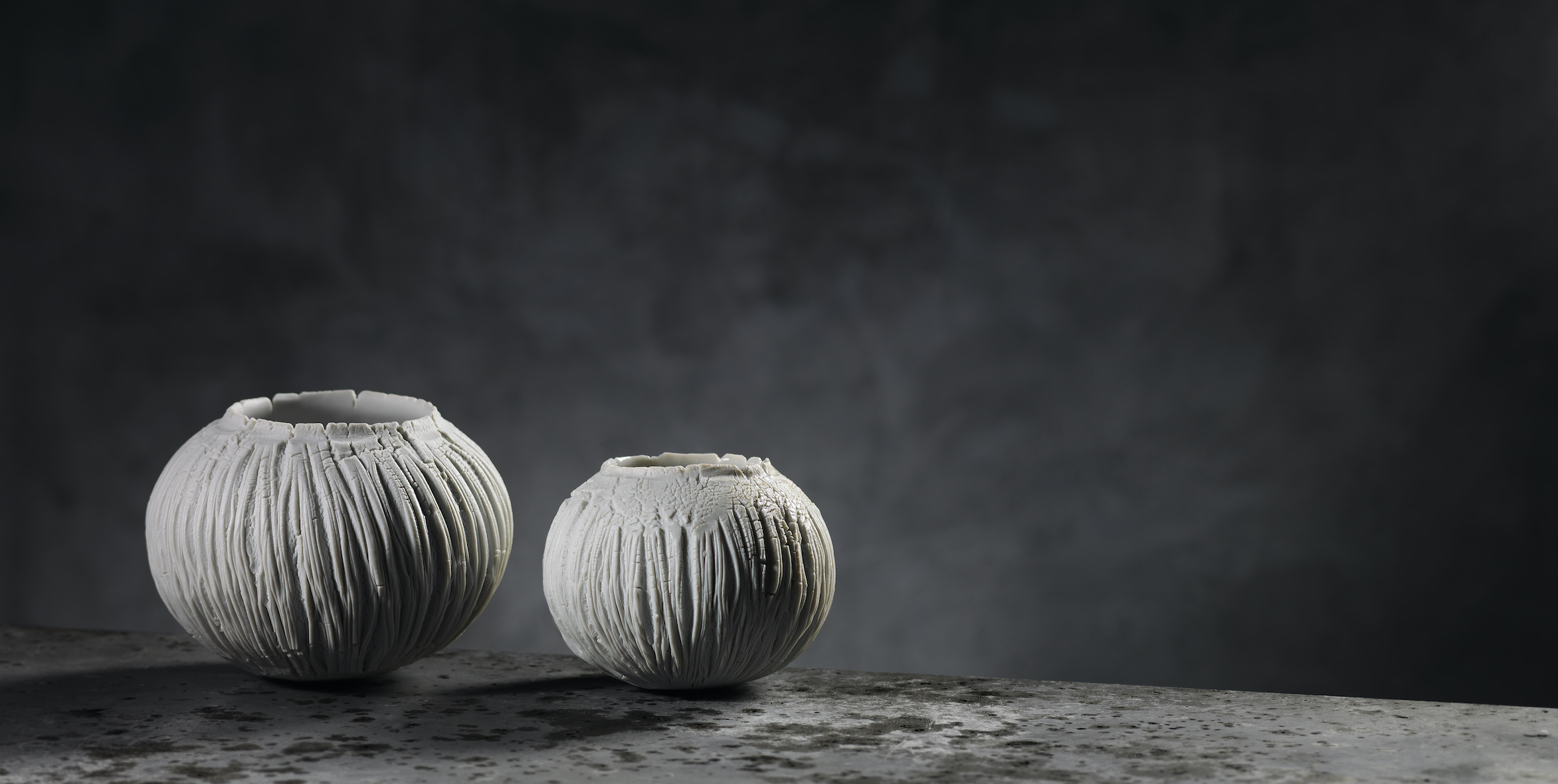 PatriciaShone.2019.porcelain.imageShannonTofts.work15.sm